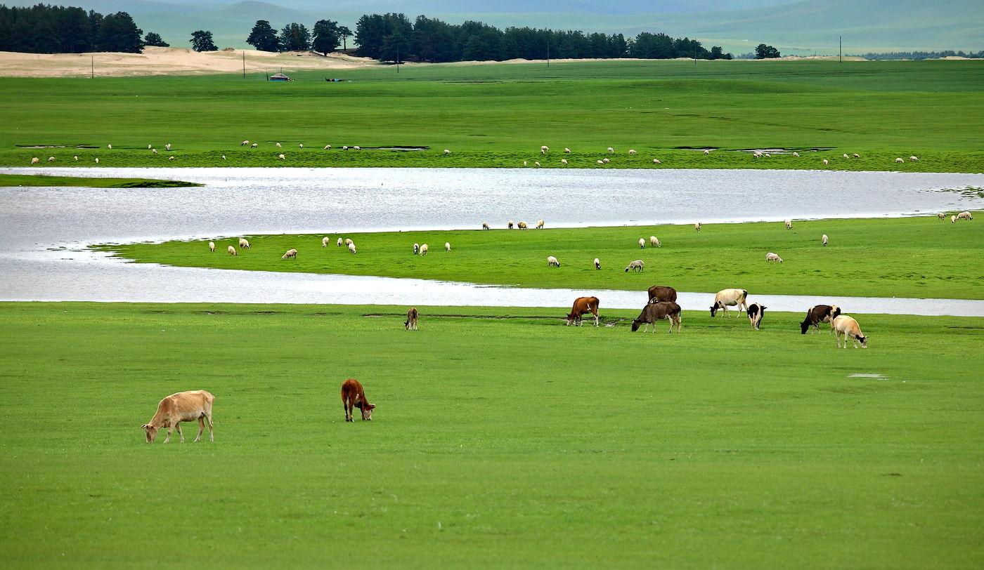 摄影之旅:呼伦贝尔大草原阿尔山满洲里金帐汗部落双飞六日纯玩游